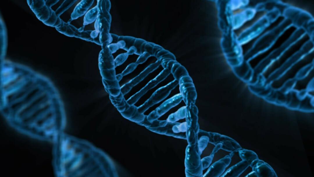 Resultado de imagen para Pareja denuncia a clínica reproductiva en EE.UU por equivocarse con embriones
