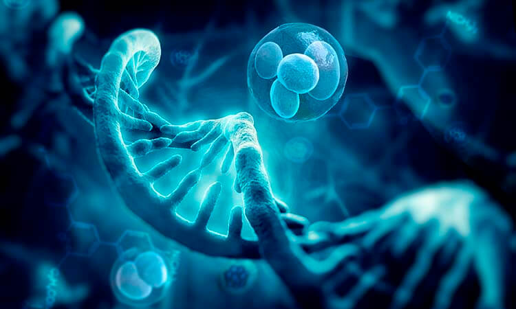 El DGP como herramienta genética